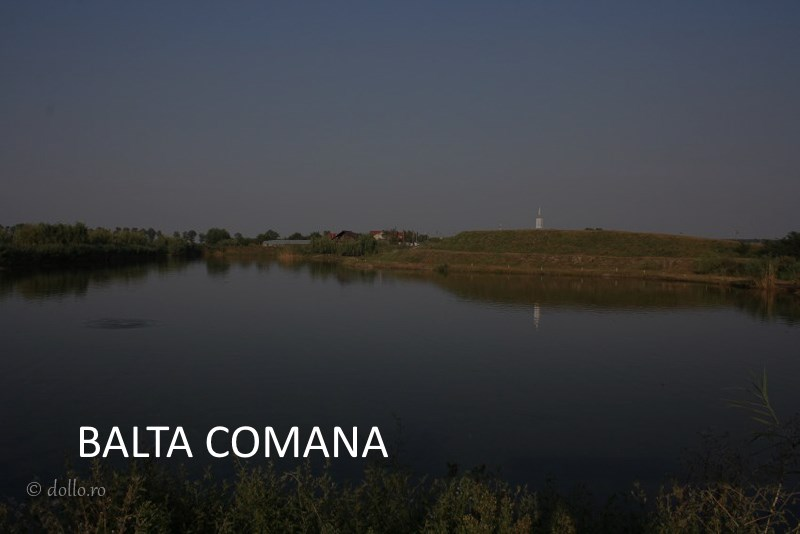 BALTA COMANA demo